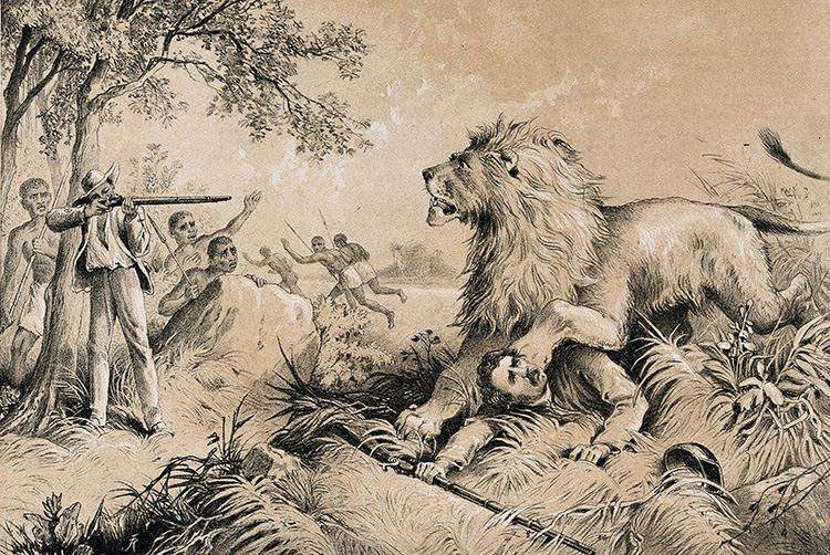 David-Livingstone-Lion-Attack