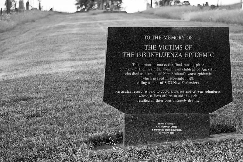 1918 Influenza Epidemic Site