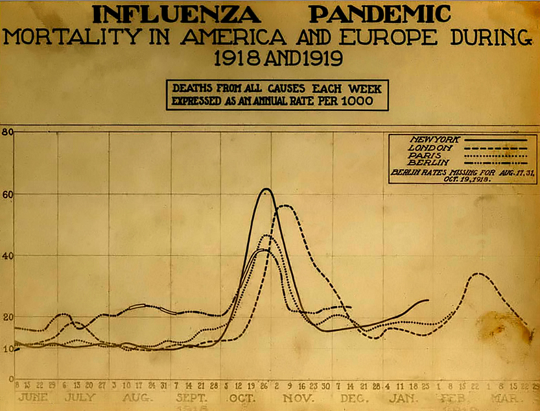 Mortality from the 1918 influenza pandemic