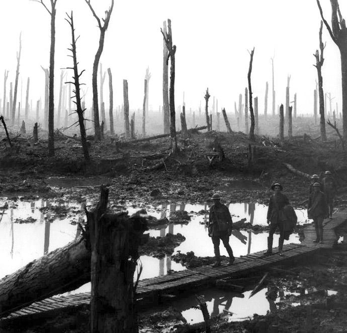 Chateau_Wood_Ypres_1917