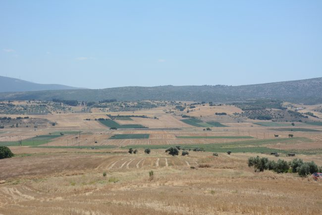 The site of the Battle of Leuctra.