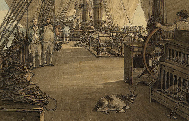 What Did Sailors in the Georgian Royal Navy Eat? – History Hit
