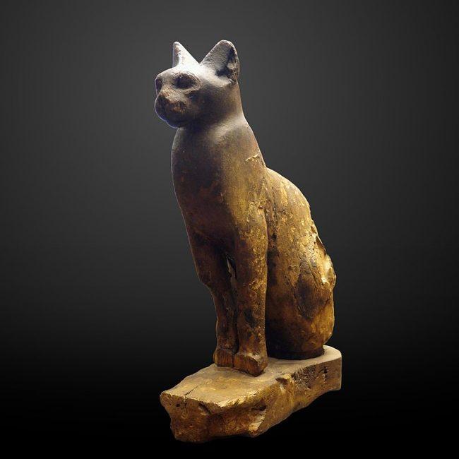 Cat mummy-MAHG 23437