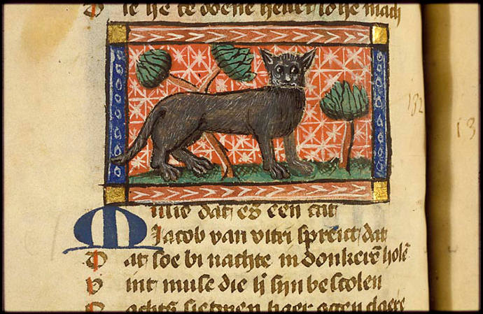 cats-medieval