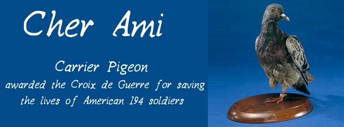 cher-ami-heroic-pigeon